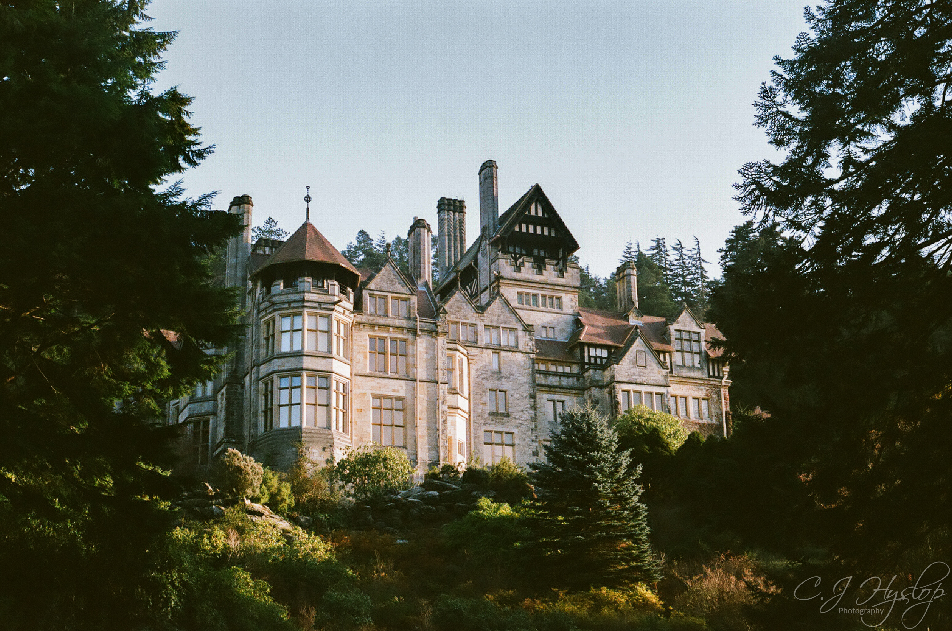 Cragside November 2018 ~ Rolleiflex SL35